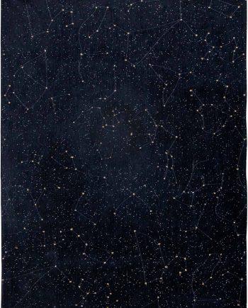 Louis De Poortere tapijt Fischbacher 9059 Celestial Night Sky